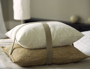 organic-japanese-buckwheat-pillow